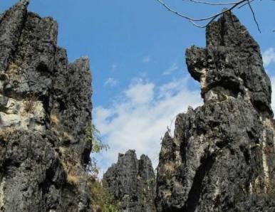 隆阳区景点攻略——瓦渡石林地质公园