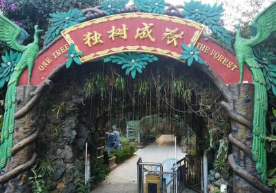 云南暖冬浪漫之旅——边境口岸瑞丽