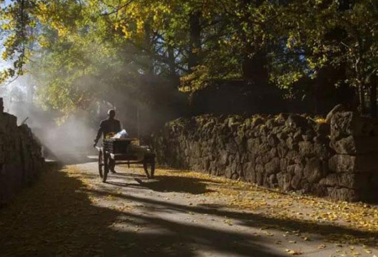 11月的腾冲,承包了你对秋天所有的憧憬,不来看看吗?
