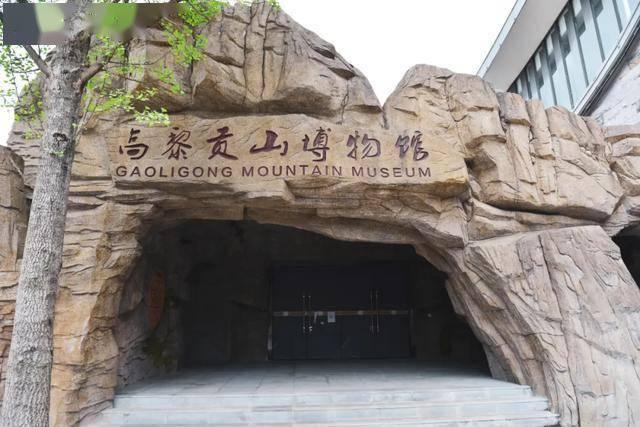 在腾冲高黎贡山博物馆,开启一段探索自然的奇幻旅程